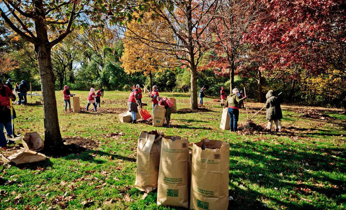 LYP Fall 2019 Cobbs Creek-Raking Leaves