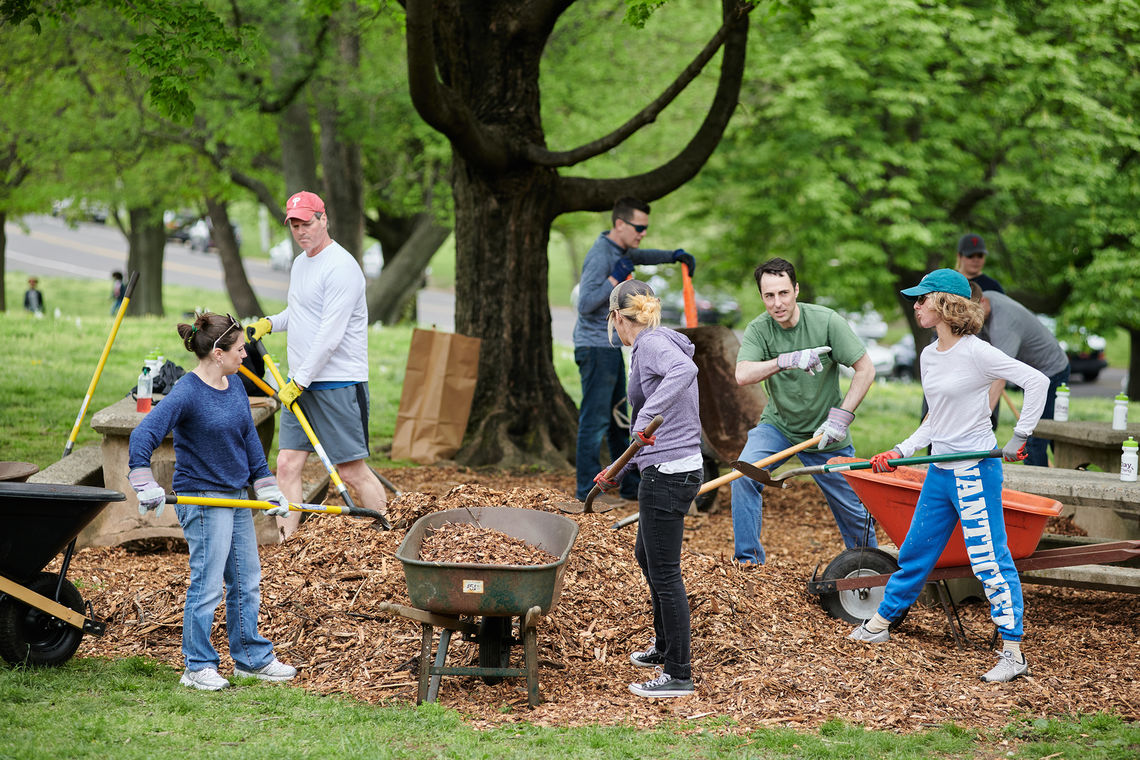 A group of volunteers mulches a large tree and picnci area